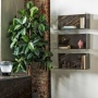 Bontempi Casa Zen Shelf
