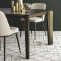 Calligaris Delta Wood Table