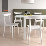 Connubia Calligaris Evergreen Chair